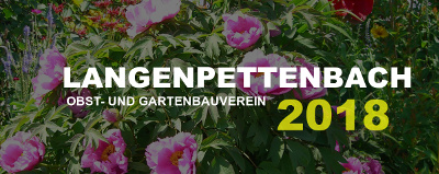Langenpettenbach